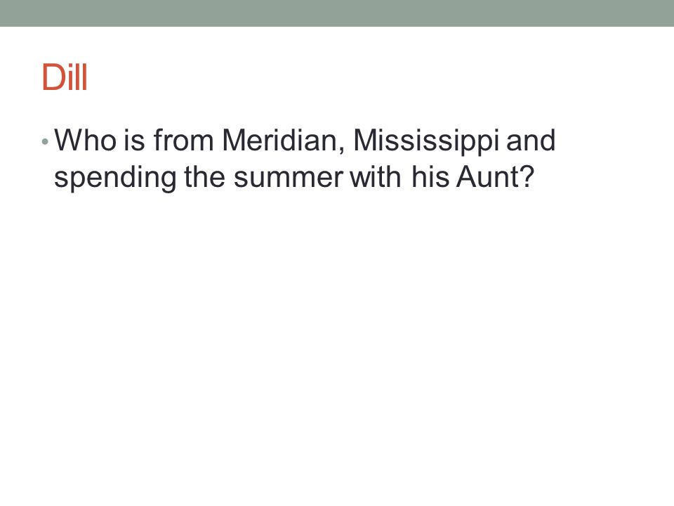 Dill Who is from Meridian, Mississippi and spending the summer with his Aunt