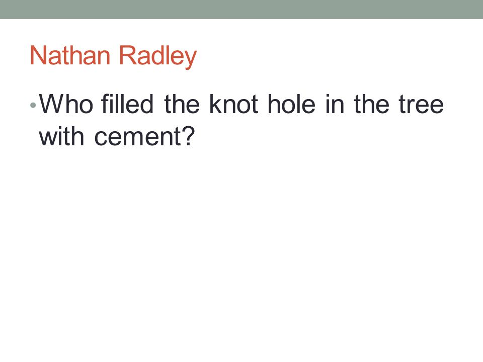 Nathan Radley Who filled the knot hole in the tree with cement