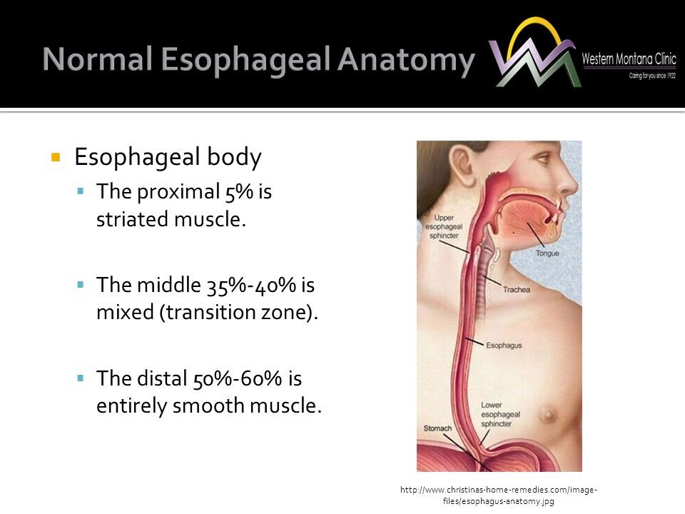 Esophageal Manometry K...