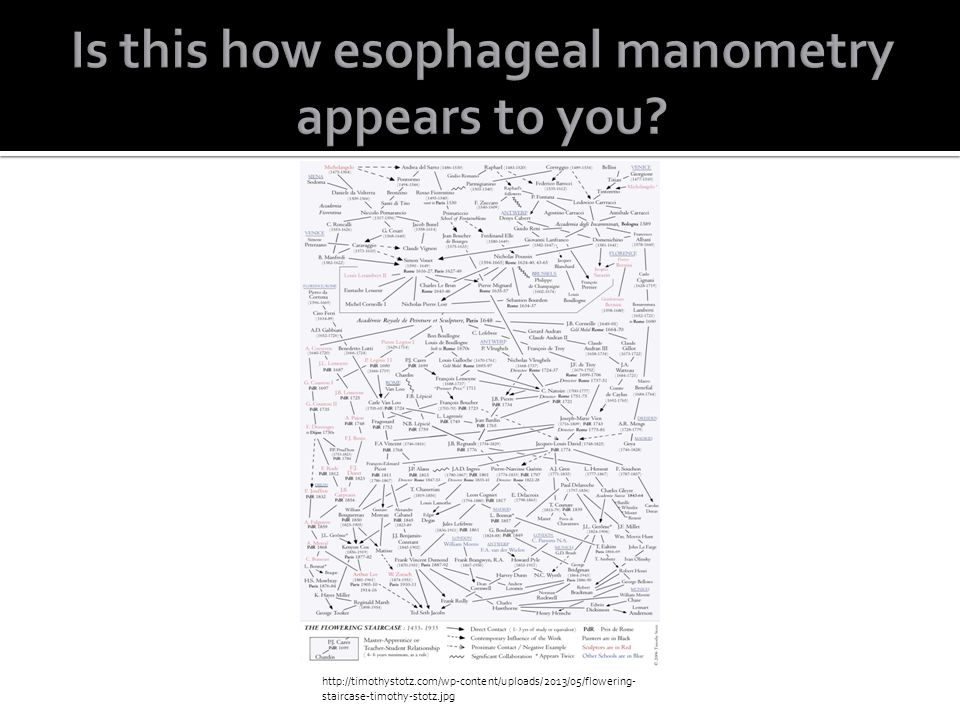 Is this how esophageal manometry appears to you