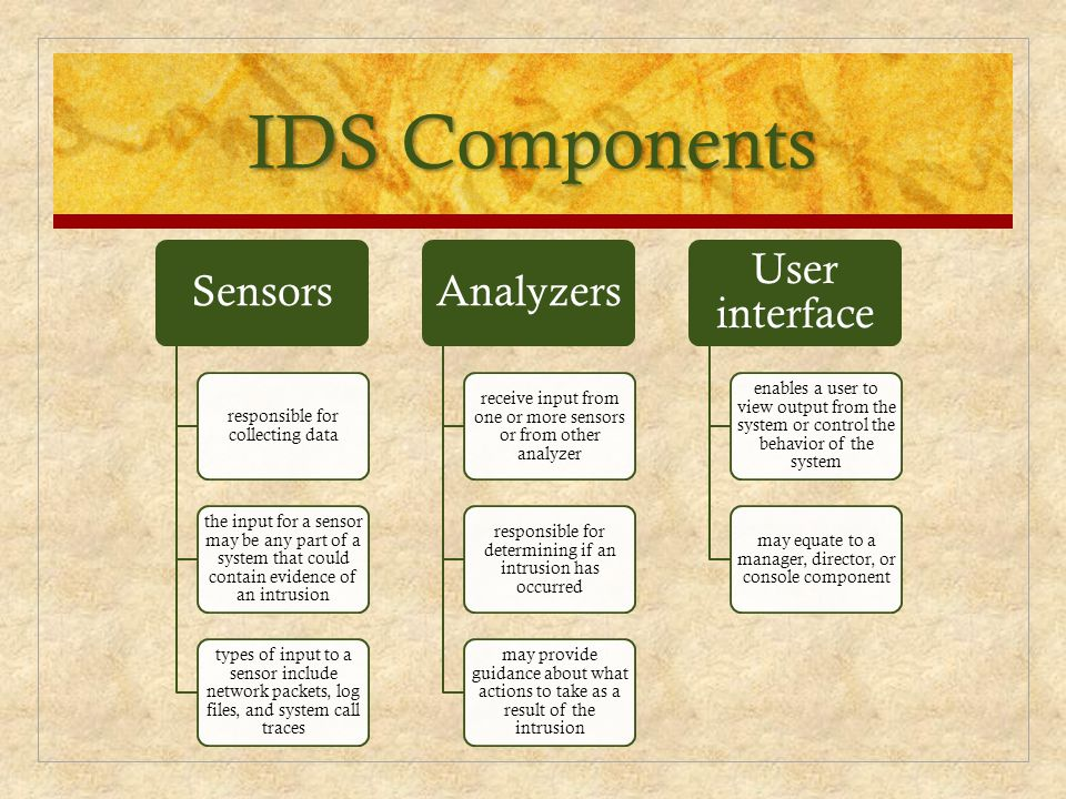 IDS Components Sensors Analyzers User interface