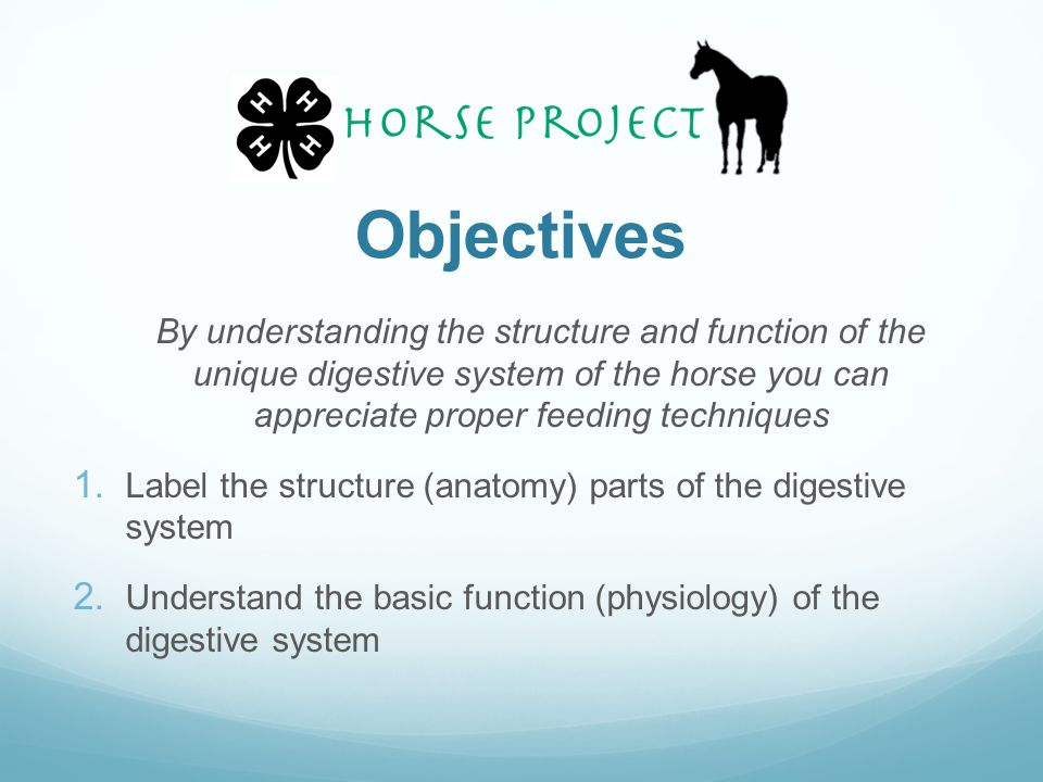 Objectives By understanding the structure and function of the unique digestive system of the horse you can appreciate proper feeding techniques.