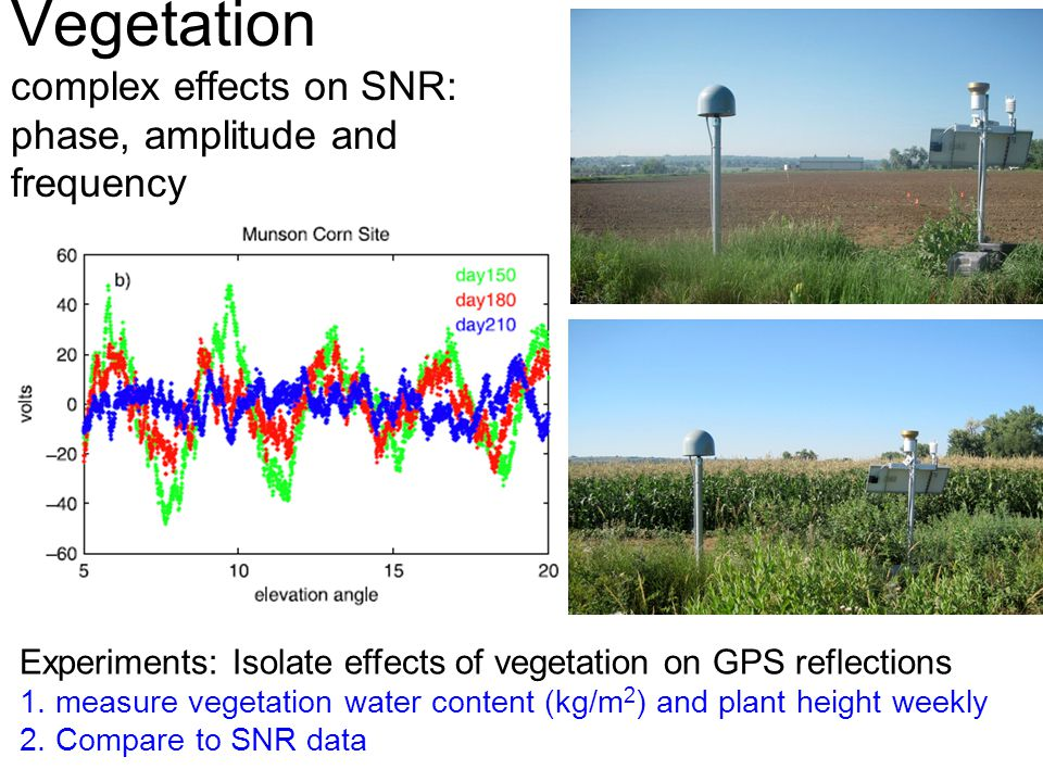 Vegetation complex effects on SNR: phase, amplitude and frequency