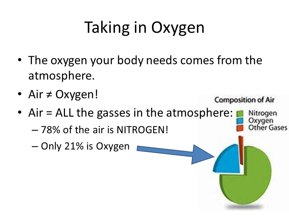 Taking in Oxygen The oxygen your body needs comes from the atmosphere.