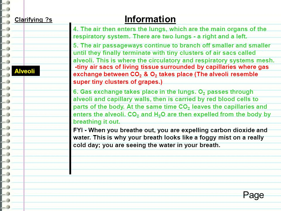 Information Page Clarifying s
