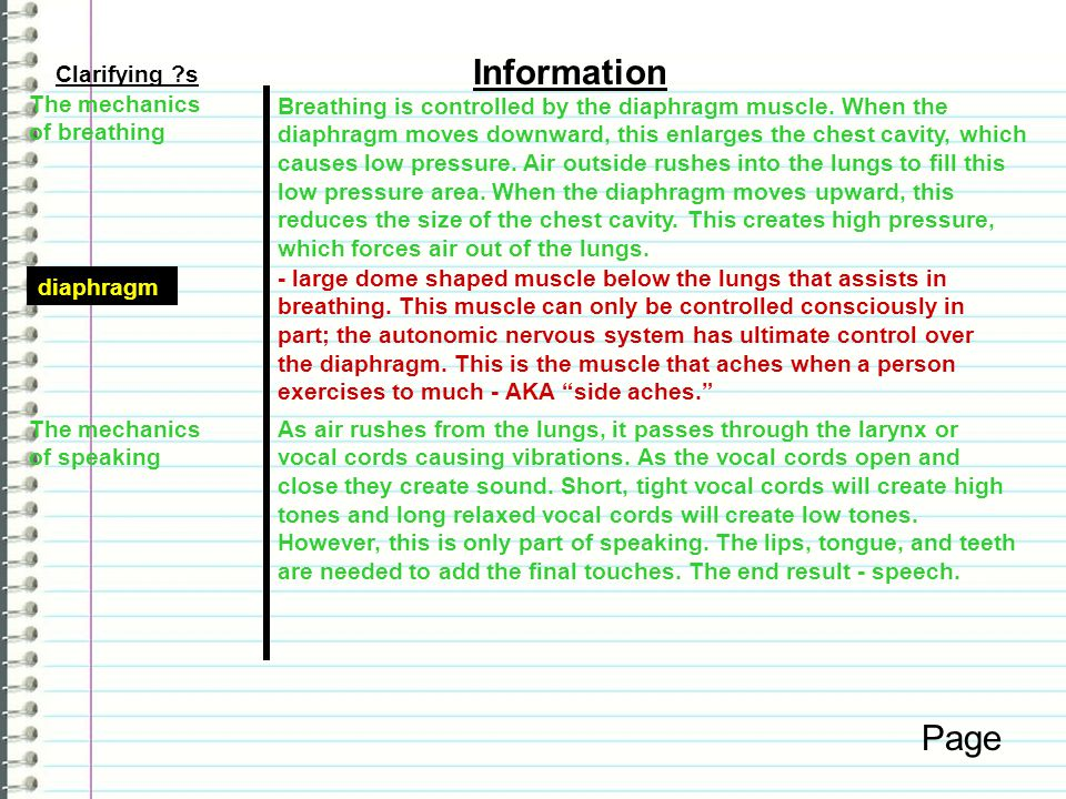 Information Page Clarifying s The mechanics of breathing
