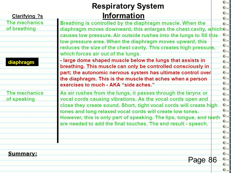 Respiratory System Information Page 86 Clarifying s
