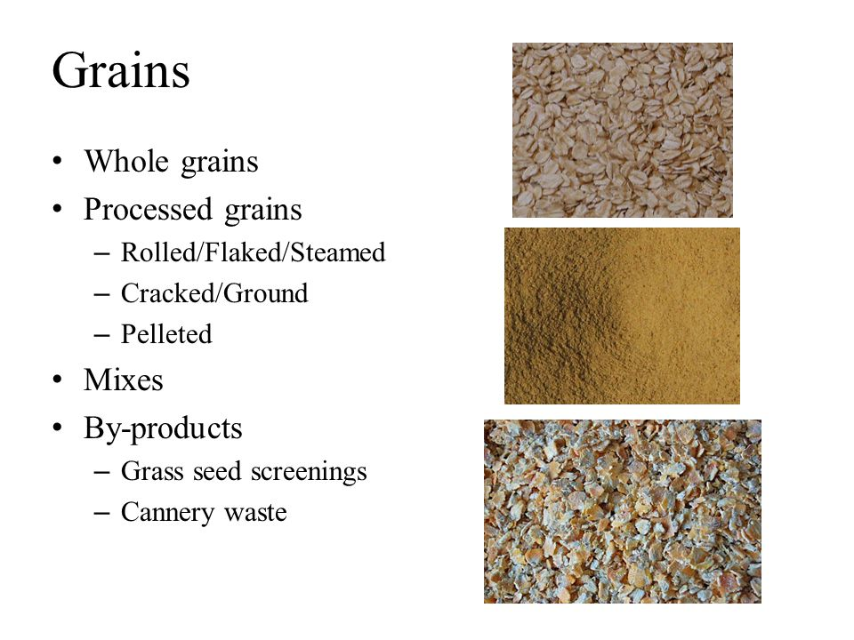 Grains Whole grains Processed grains Mixes By-products