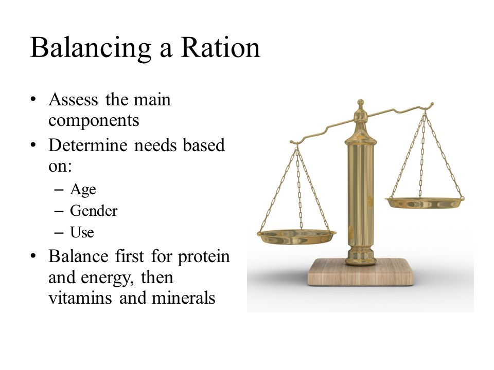 Balancing a Ration Assess the main components