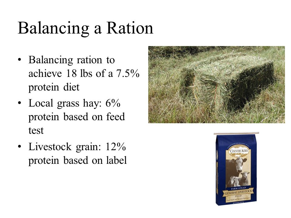 Balancing a Ration Balancing ration to achieve 18 lbs of a 7.5% protein diet. Local grass hay: 6% protein based on feed test.