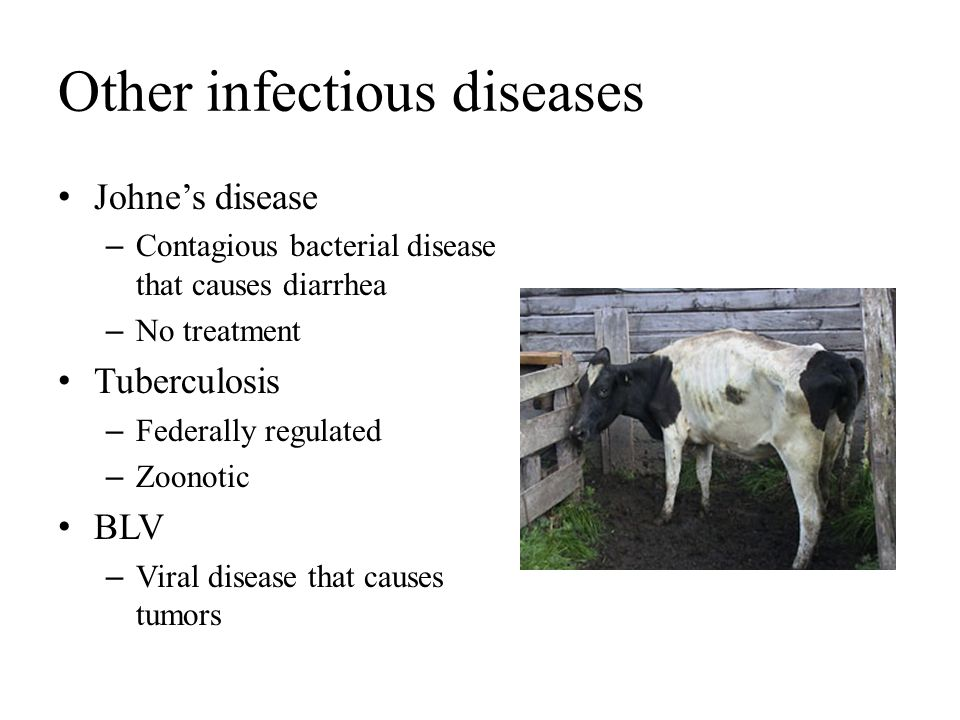 Other infectious diseases