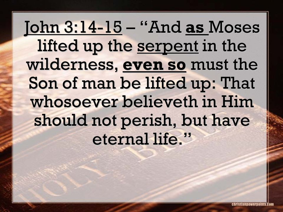 John 3:14-15 – And as Moses lifted up the serpent in the wilderness, even so must the Son of man be lifted up: That whosoever believeth in Him should not perish, but have eternal life.