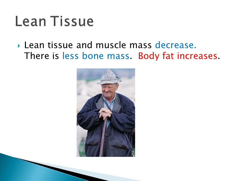 Lean Tissue Lean tissue and muscle mass decrease. There is less bone mass. Body fat increases.