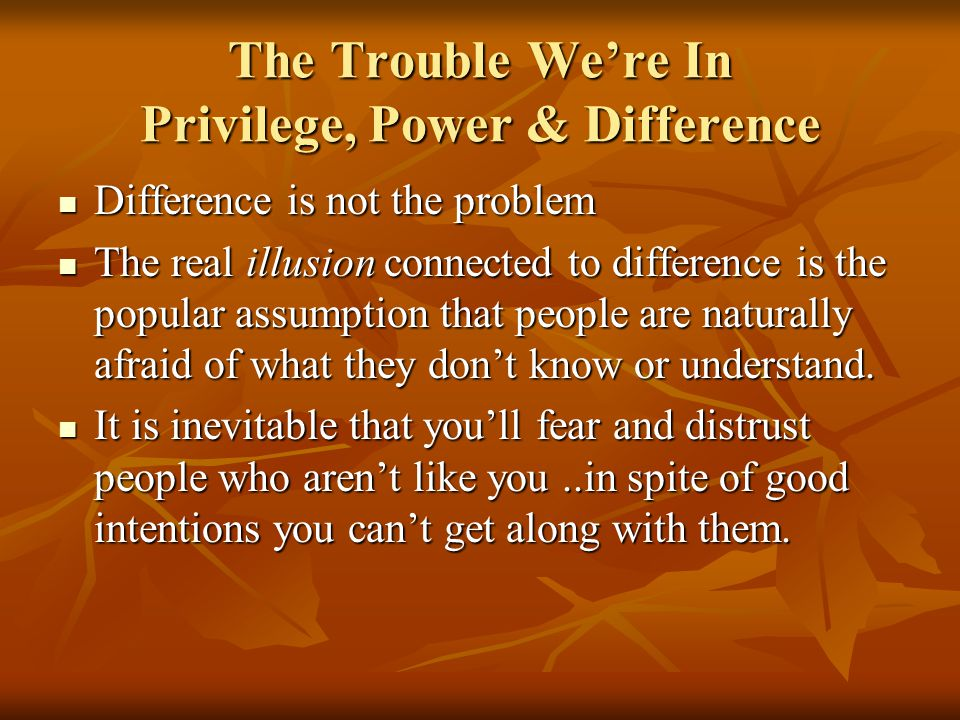 The Trouble We're In Privilege, Power & Difference