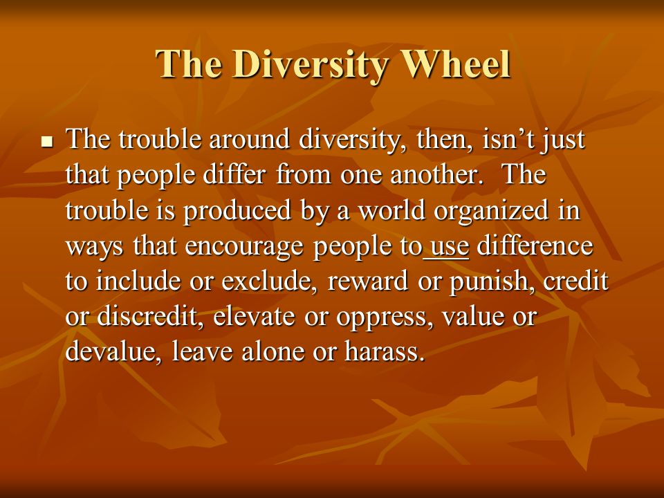 The Diversity Wheel