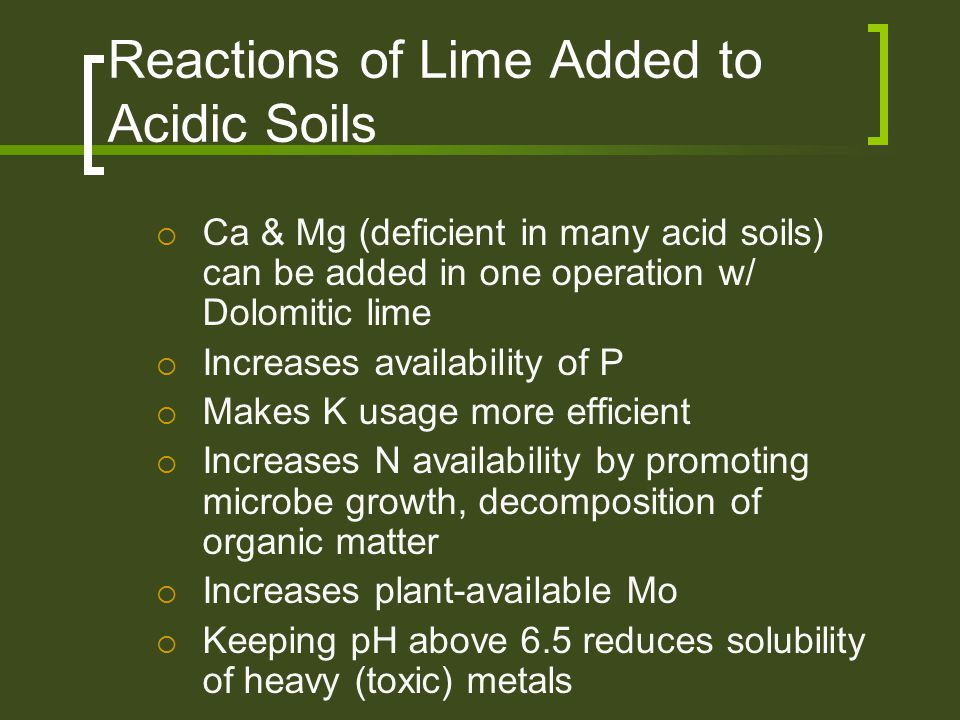 Reactions of Lime Added to Acidic Soils