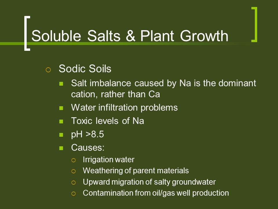 Soluble Salts & Plant Growth