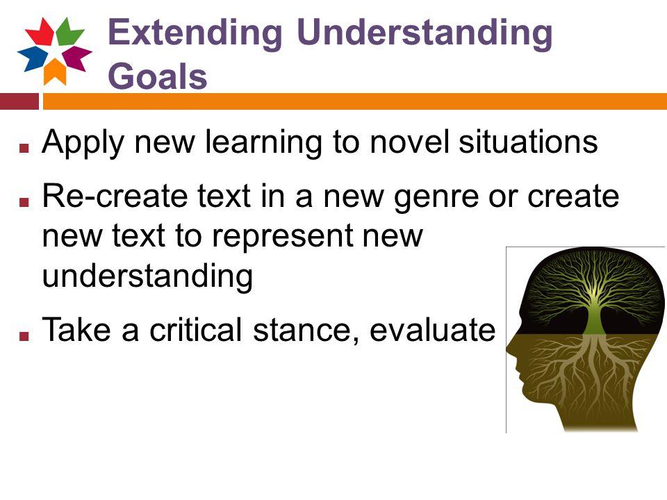 Extending Understanding Goals