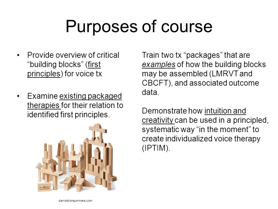 Purposes of course Provide overview of critical building blocks (first principles) for voice tx.