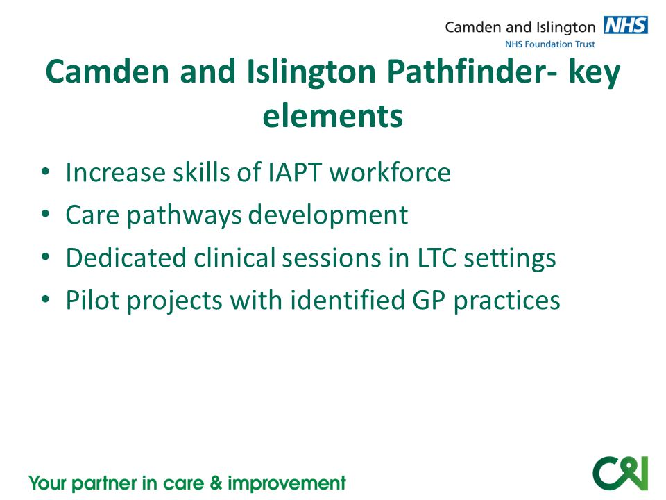 Camden and Islington Pathfinder- key elements