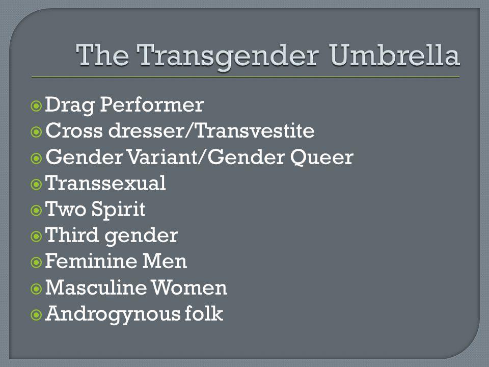The Transgender Umbrella
