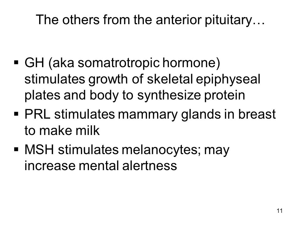The others from the anterior pituitary…
