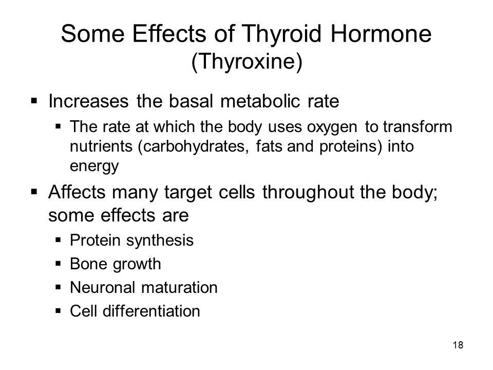 Some Effects of Thyroid Hormone (Thyroxine)