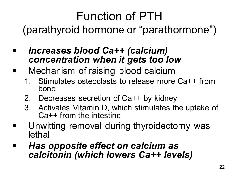 Function of PTH (parathyroid hormone or parathormone )