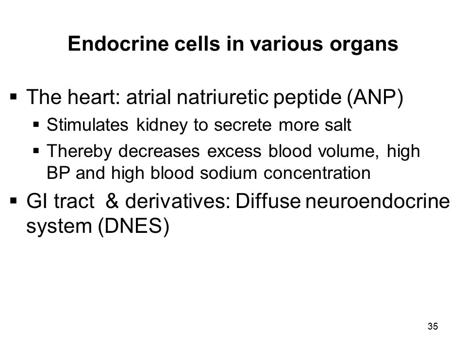 Endocrine cells in various organs