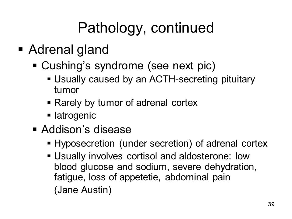 Pathology, continued Adrenal gland Cushing's syndrome (see next pic)