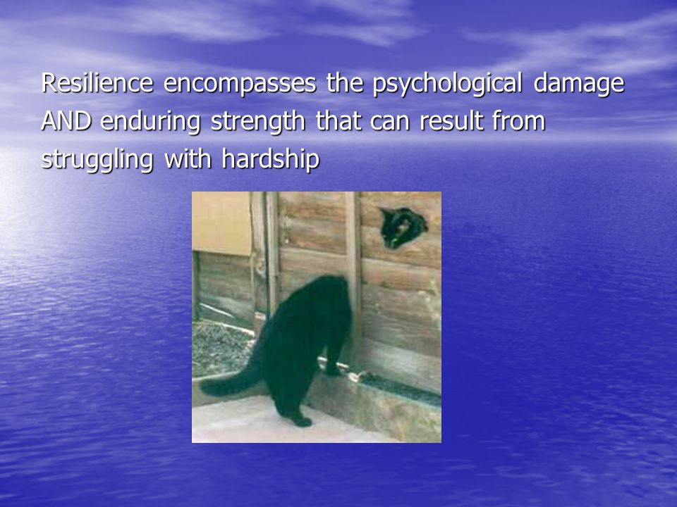 Resilience encompasses the psychological damage