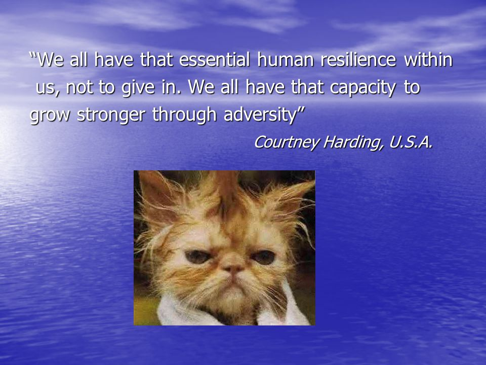 We all have that essential human resilience within