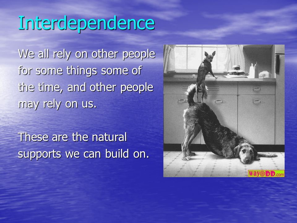 Interdependence We all rely on other people for some things some of