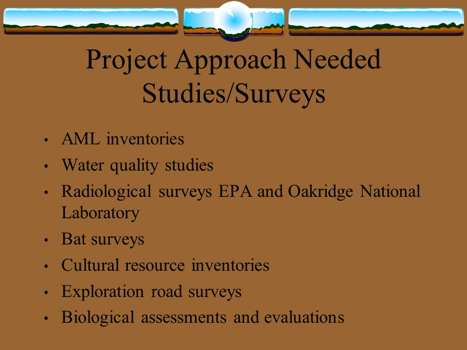 Project Approach Needed Studies/Surveys