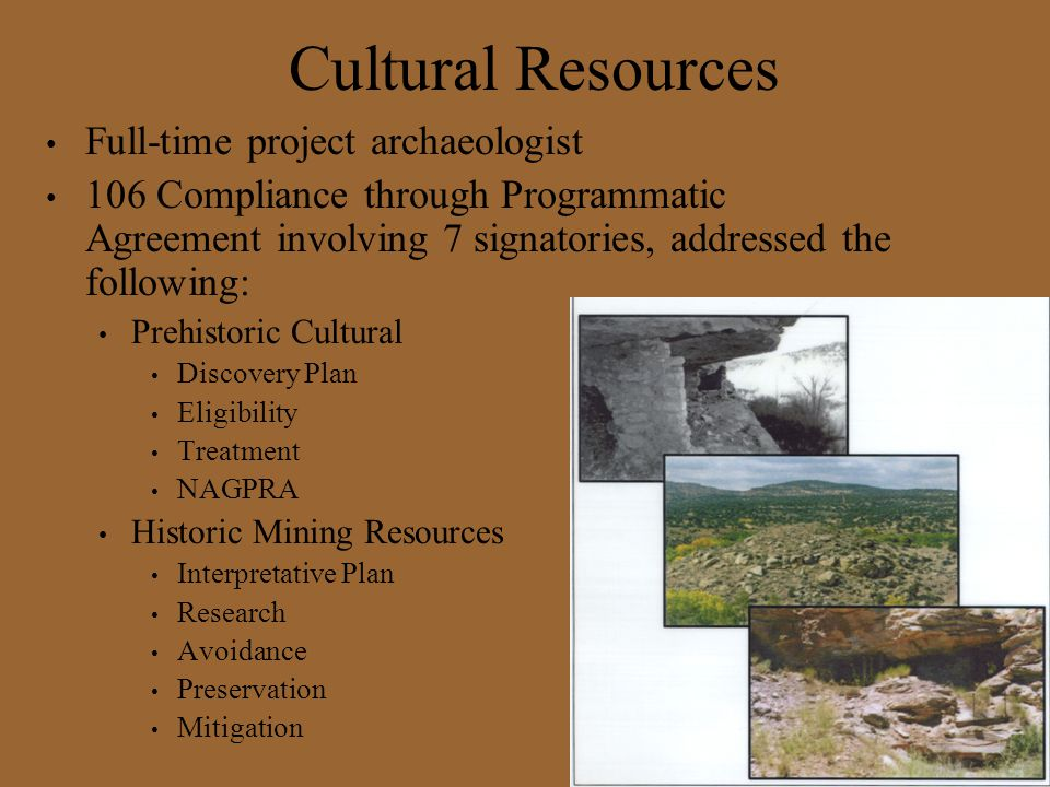 Cultural Resources Full-time project archaeologist
