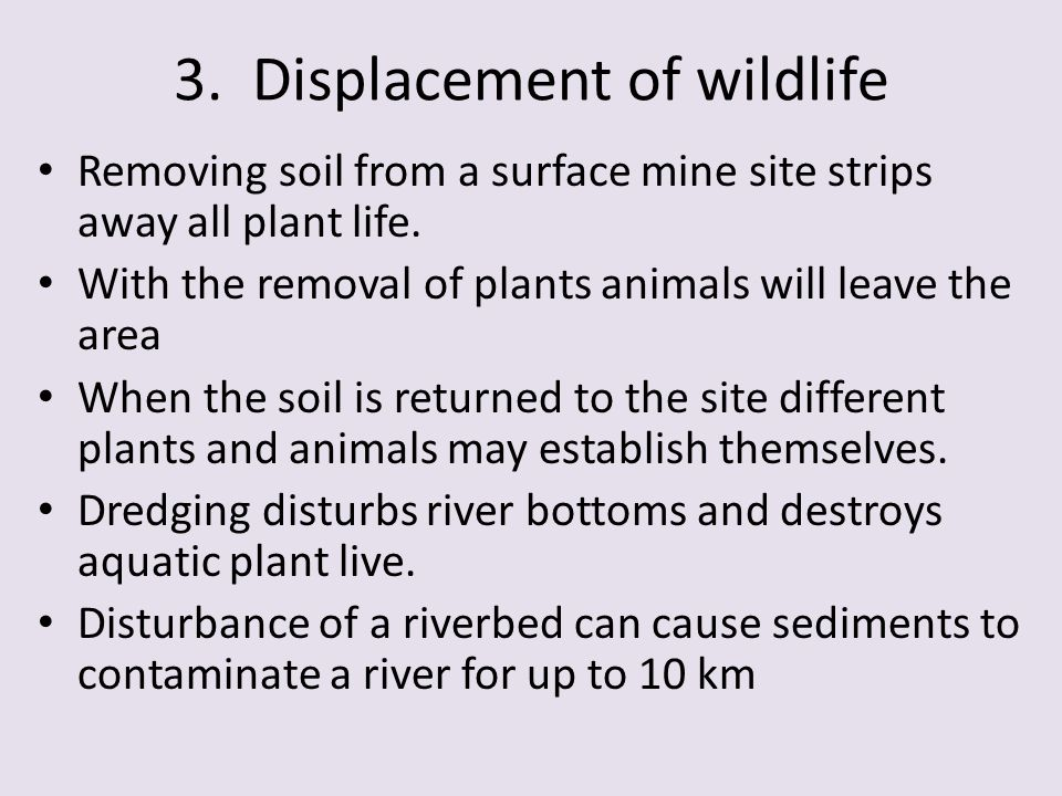 3. Displacement of wildlife