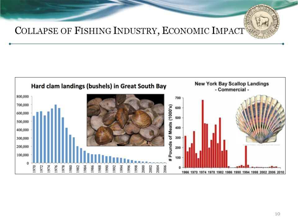 Collapse of Fishing Industry, Economic Impact