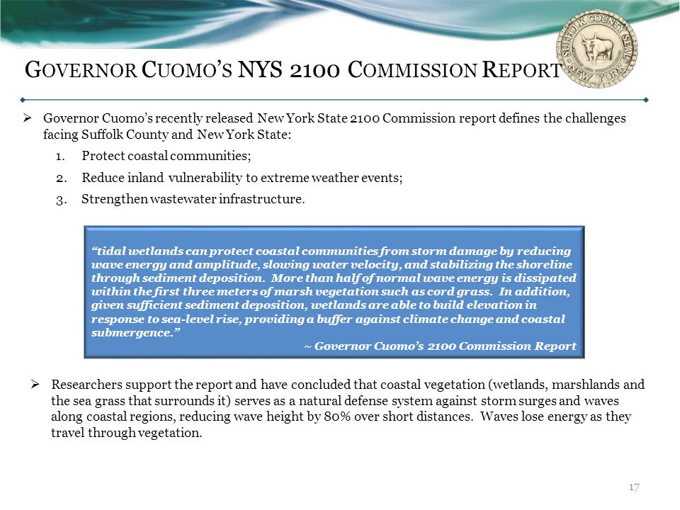 Governor Cuomo's NYS 2100 Commission Report