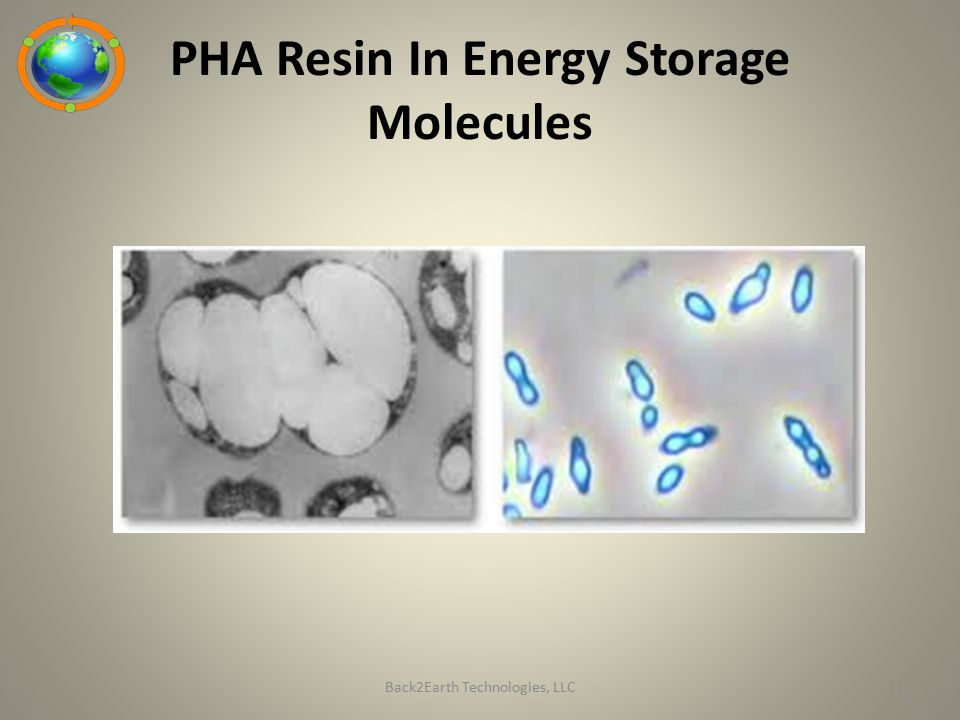 PHA Resin In Energy Storage Molecules
