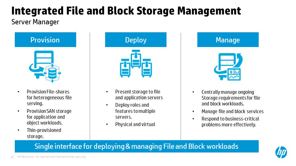 Integrated File and Block Storage Management Server Manager