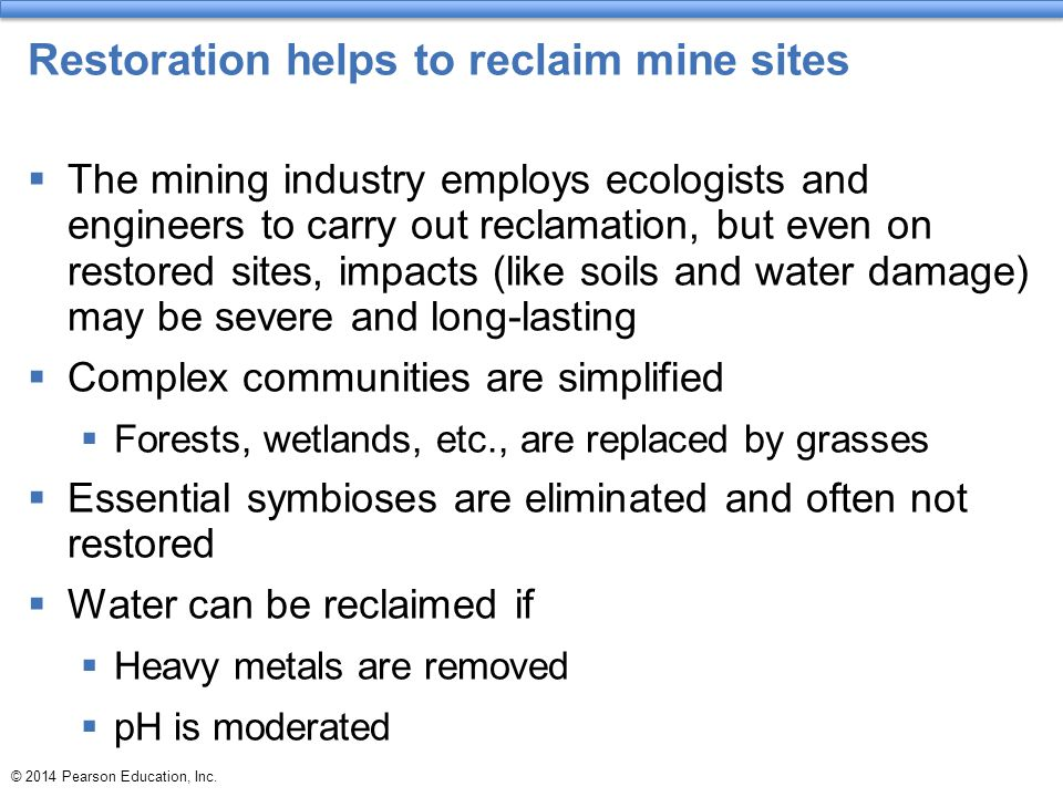 Restoration helps to reclaim mine sites