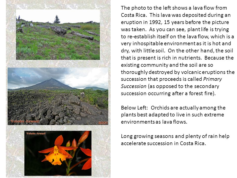 The photo to the left shows a lava flow from Costa Rica