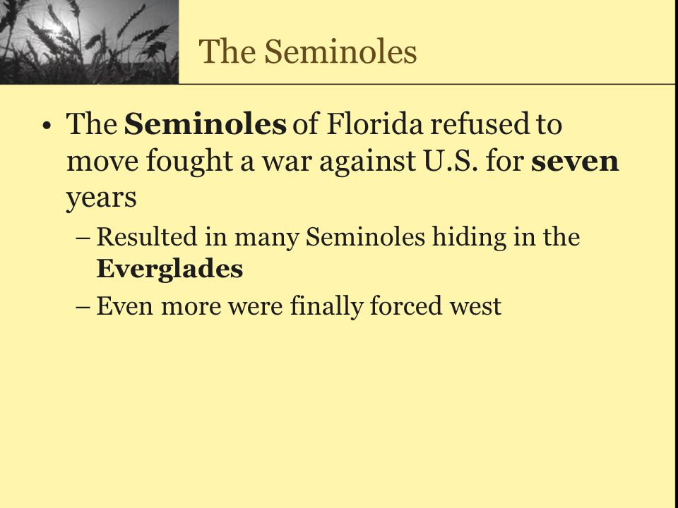 The Seminoles The Seminoles of Florida refused to move fought a war against U.S. for seven years.