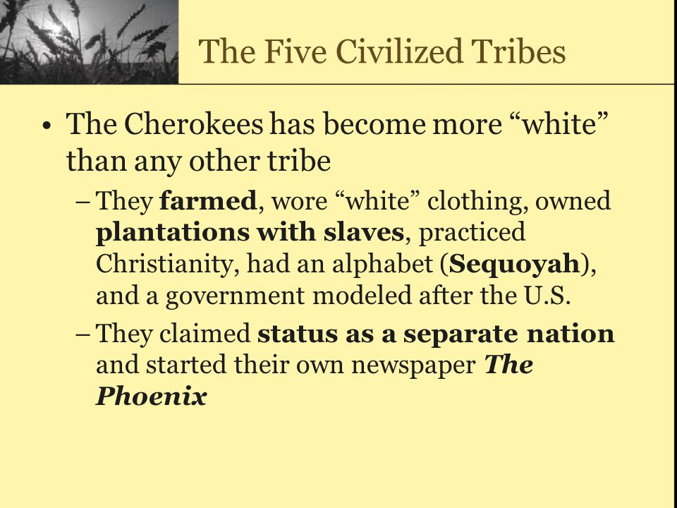 The Five Civilized Tribes