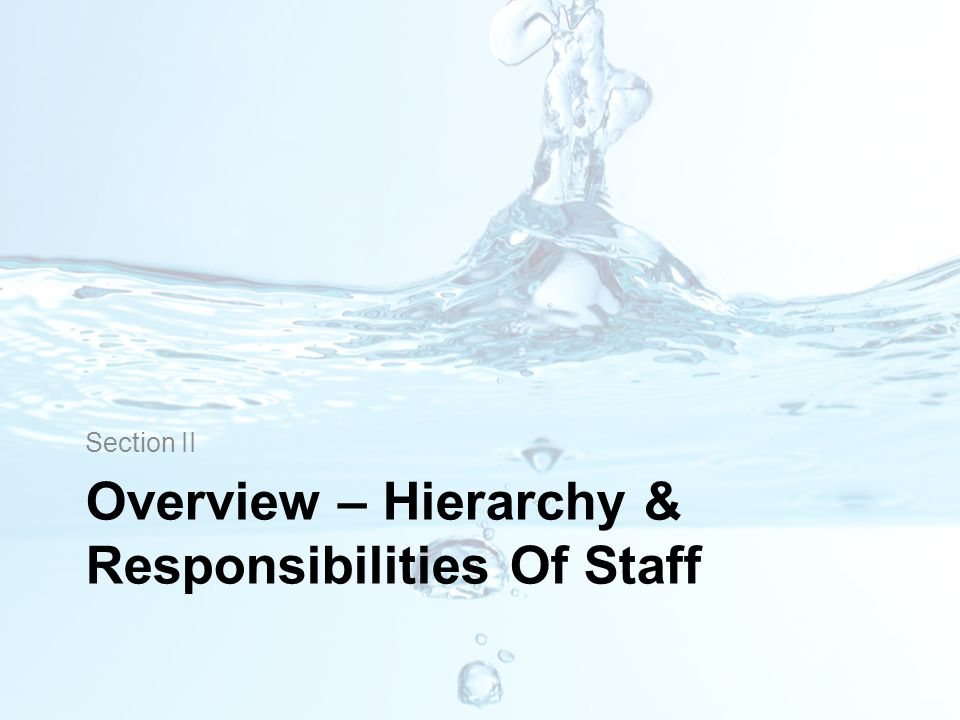 Overview – Hierarchy & Responsibilities Of Staff