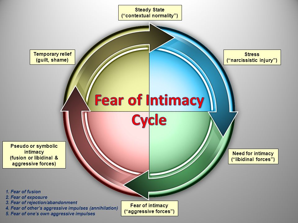 Fear of Intimacy Cycle Steady State ( contextual normality )