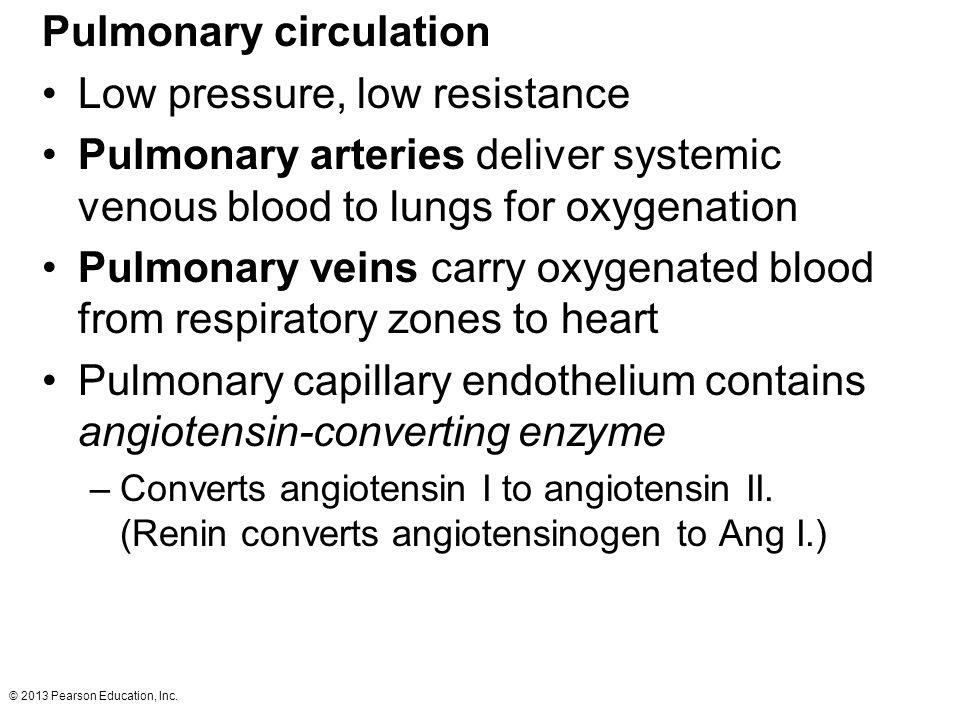 Pulmonary circulation Low pressure, low resistance