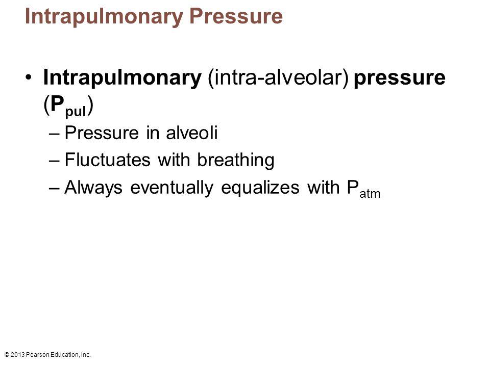 Intrapulmonary Pressure
