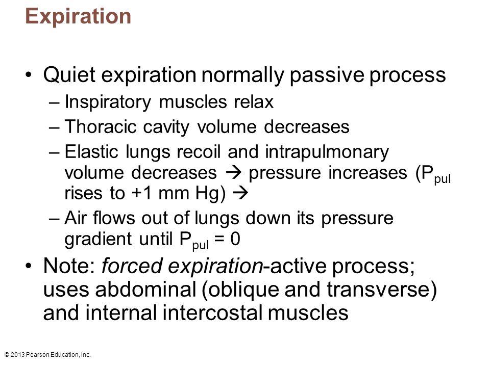 Quiet expiration normally passive process