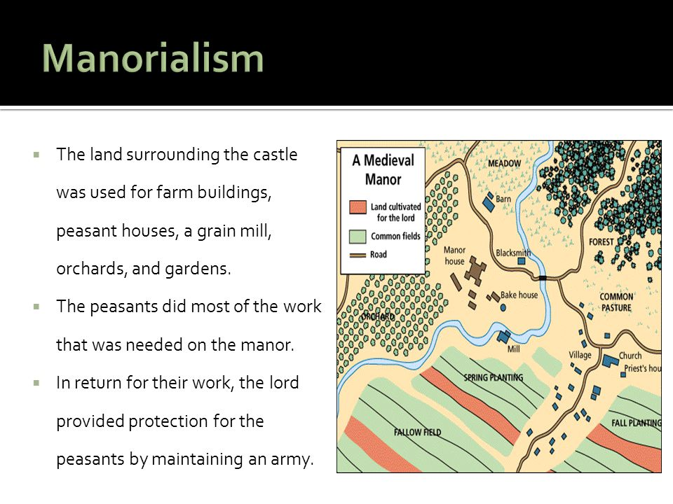 Manorialism The land surrounding the castle was used for farm buildings, peasant houses, a grain mill, orchards, and gardens.